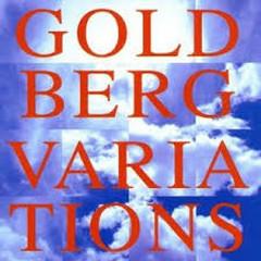 J.S.Bach - Goldberg Variations (No. 2) - Dmitry Sitkovetsky,NES Chamber Orchestra