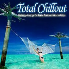 Total Chillout (Wellness Lounge For Body, Soul And Mind To Relax) (No. 2)