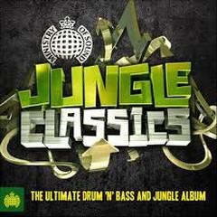 Jungle Classics - Ministry Of Sound (No. 3)