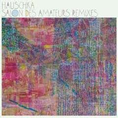 Salon Des Amateurs Remixes  - Hauschka