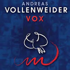 Vlad's Favorite Albums - Vox - Andreas Vollenweider