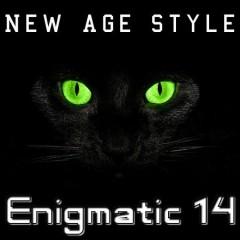 Enigmatic 14 (No. 3)