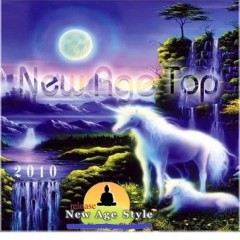 New Age Top 2010 (No. 2)