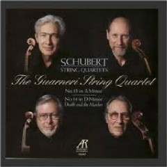 Schubert - String Quartets Nos. 13 & 14 - Guarneri Quartet