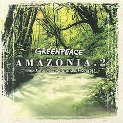 Greenpeace Amazonia, Vol. 2