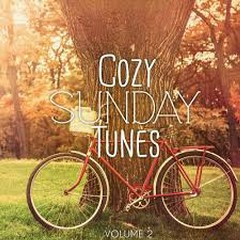 Cozy Sunday Tunes Vol 2 Finest Relaxing And Hang Out Music (No. 1)