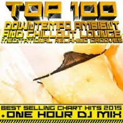 Top 100 Downtempo Ambient & Chillout Lounge Meditational Relaxing Grooves (No. 6)