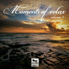 Moments Of Relax Vol 1