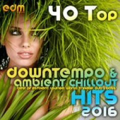 40 Top Downtempo & Ambient Chillout Hits 2016 (No. 3)