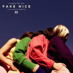 Fake Nice (Single)
