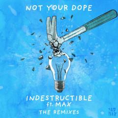 Indestructible (The Remixes)