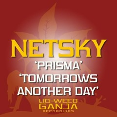 Prisma , Tomorrow's Another Day
