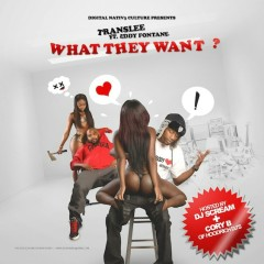 What They Want (CD1) - Translee