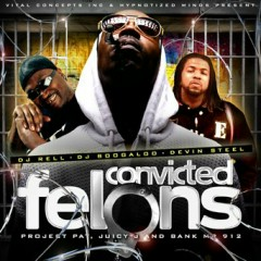Convicted Felons(CD2)