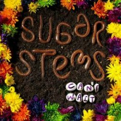 Can't Wait - Sugar Stems