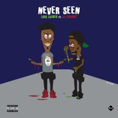 Never Seen (Single)
