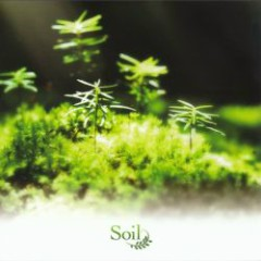 Rewrite Arrange Album – Soil