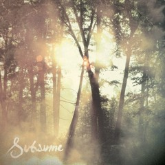 Subsume - Cloudkicker