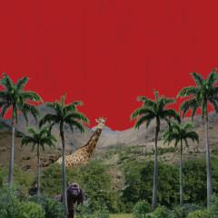 L.O.P's Records 2016-2017 (Mini Album)