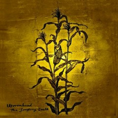 The Laughing Stalk - Wovenhand