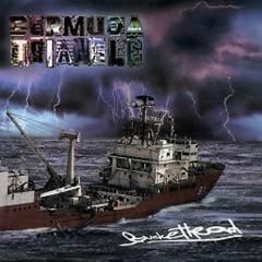 Bermuda Triangle (CD1)