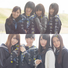 Suzukake no Ki no Michi de 'Kimi no Hohoemi wo Yumemiru' to Itteshimattara Bokutachi no Kankei... - AKB48