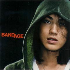 BANDAGE - LANDS