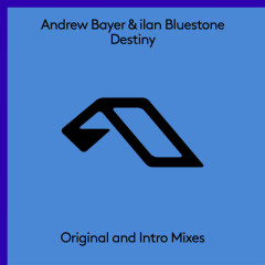 Destiny (Single) - Andrew Bayer, Ilan Bluestone