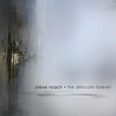 The Delicate Forever - Steve Roach