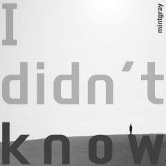 I Didn't Know - Mintgray