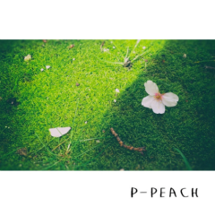 Today Is Your Weather - P-Peach