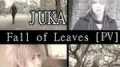 Fall Of Leaves - Juka