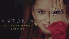 Crisálida (Audio) - Antonia, César Brandon