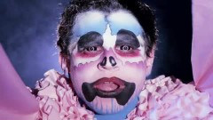 Today's Supernatural - Animal Collective