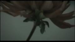 Kimi He - Mamoru Miyano