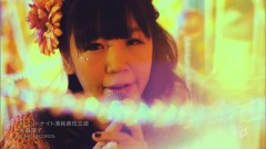 Midnight Seijun Isei Kouyuu - Seiko Omori