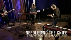 Needle And The Knife (Live On KCRW) - Tennis