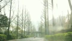 Leave Impromtu - The Tourist