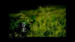 芥末 / Mù Tạt - Trần Hiểu Đông