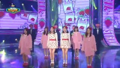 OK (141029 Show Champion) - Strawberry Milk