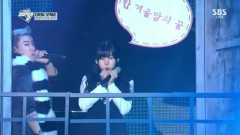 A Midsummer Night's Sweetness (2014 SBS Gayo Daejun) - Raina , San E