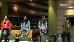 Excuse Me (150528 MBC Radio) - BESTie