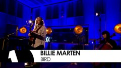 Bird (Future Festival 2016) - Billie Marten