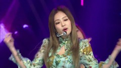 Whistle (161116 Asia Artist Awards) - Black Pink