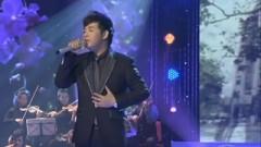 Hoa Tím Người Xưa (Liveshow Hát Trên Quê Hương) - Quang Lê
