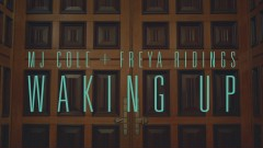 Waking Up (Official Video) - MJ Cole, Freya Ridings