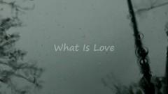 What Is Love (UCC) - Stellarjet