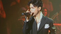 Musicology (Live At Webster Hall - April 20, 2004) - Prince