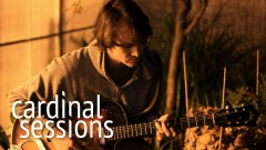 Constituents (Cardinal Sessions) - Felice Brothers