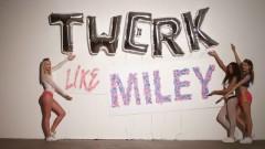 Twerk It Like Miley - Brandon Beal, Christopher